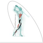 Logo_golf_physio-150x150